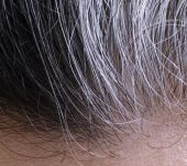 Ten common preconceptions about grey hair