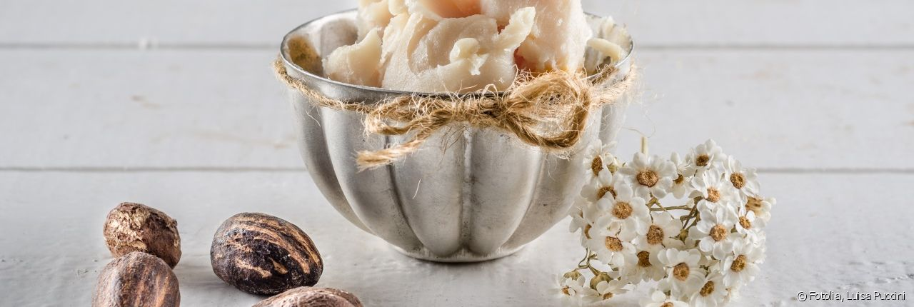 Shea butter is obtained from nuts and kernels.